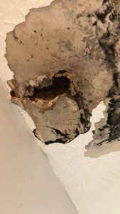 Hole in the ceiling - roofing in Indianapolis